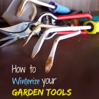 Winterize Garden Tools. 14 tips to prepare your garden tools for the winter. thegardeningcook.com/