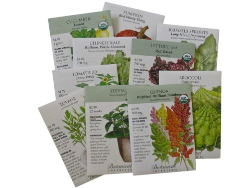 Seed packet in a gift box