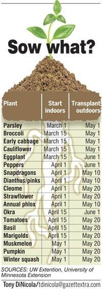 When to plant seeds from gazettextra.com