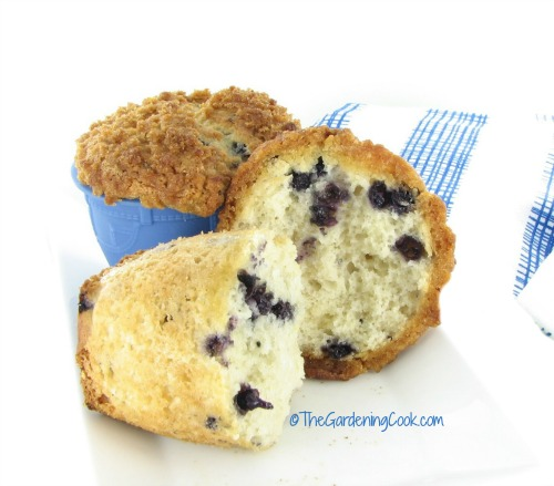 fresh blueberries give these muffins a fruity taste