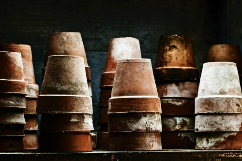 clean your clay pots