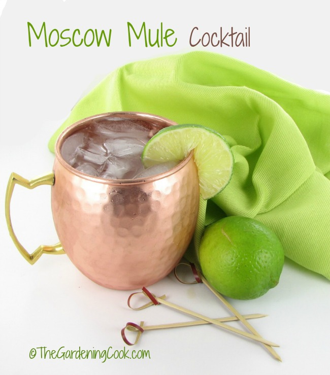 This refreshing Moscow Mule drink is best served in a copper mug. It became very popular in the US in the 1960s when the Vodka craze was so popular. See how to make it - thegardeningcook.com/moscow-mule-cocktail