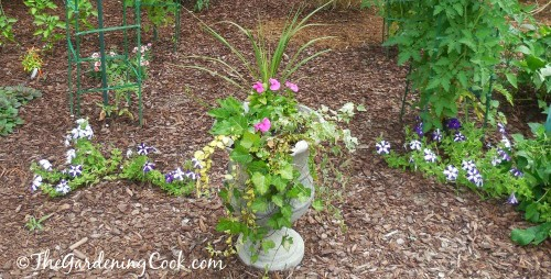 mulching adds so much to a garden bed