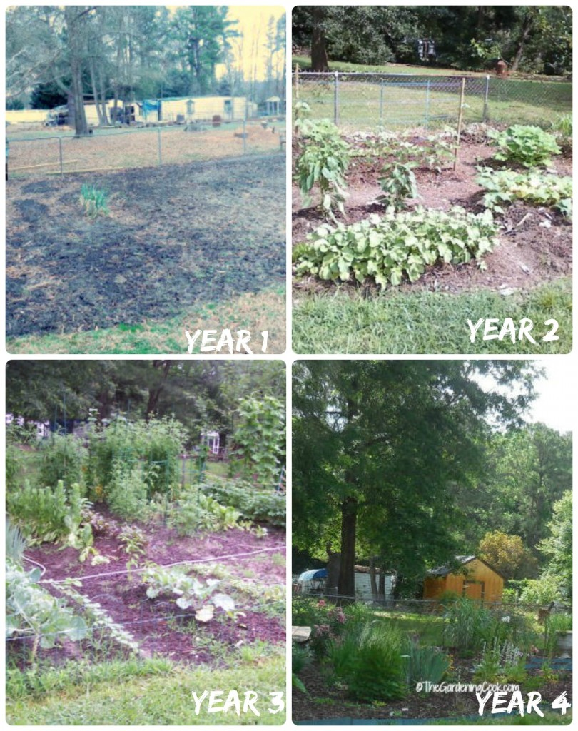 Four Year Garden Bed