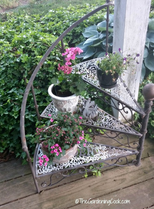 circular stair case plant stand