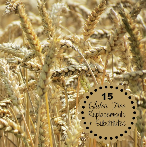 15 Gluten Free Replacement and Substitutes