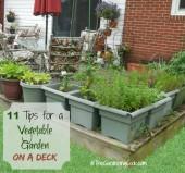 11 tips to grow a vegetable garden on a deck
