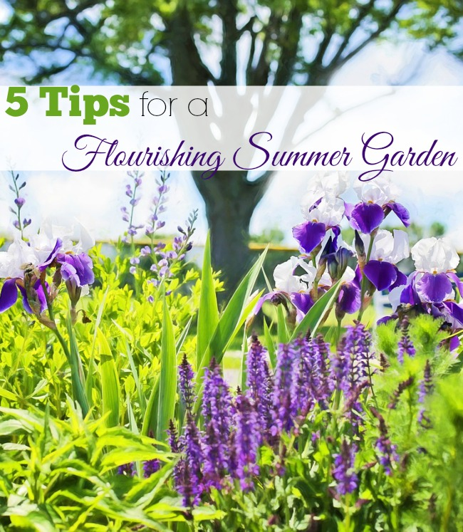 With these easy 5 tips, you can be sure to have a flourishing summer garden all season long.