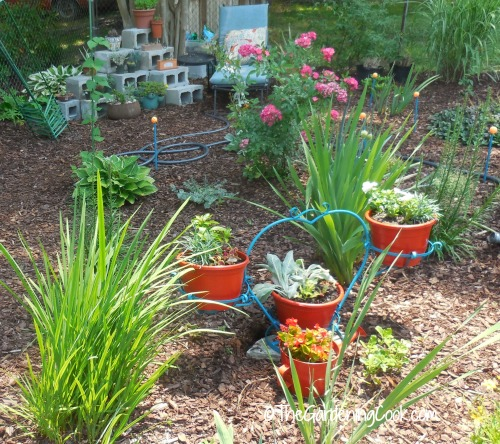 side view of garden bed