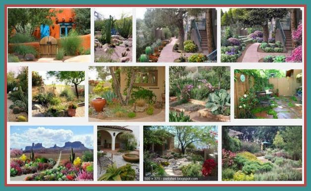 South west Garden inspiration