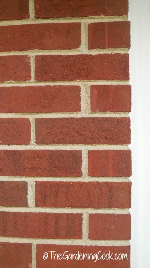 Color of brick.