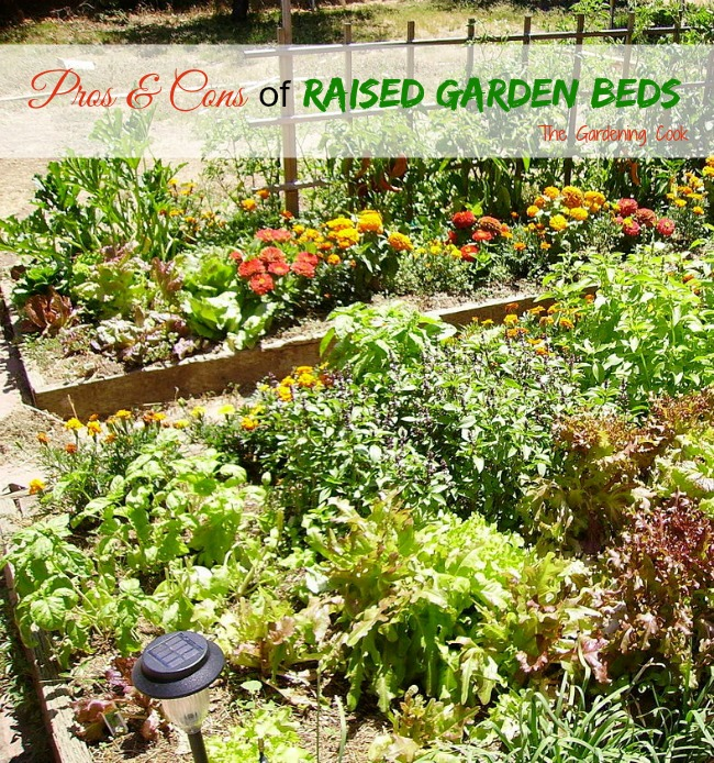 Raised Garden Beds are great for smaller garden spaces. See the pros and cons of them in my latest blog post.