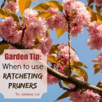 When to use ratcheting pruners