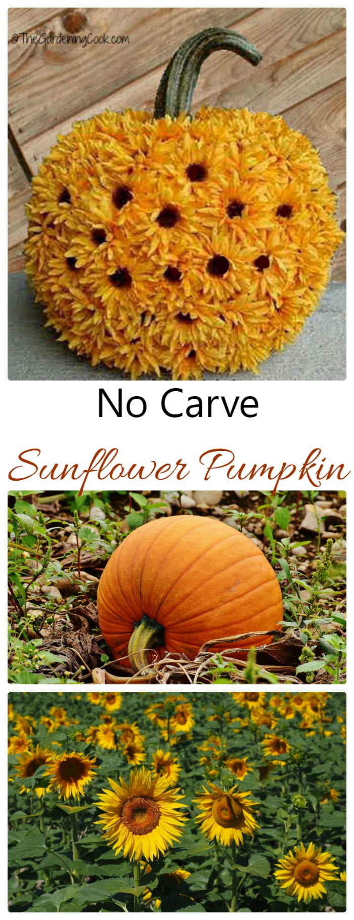This no carve sunflower pumpkin is mess free and makes such a pretty display.