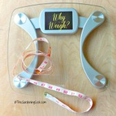 Wednesday accountability, without the scales
