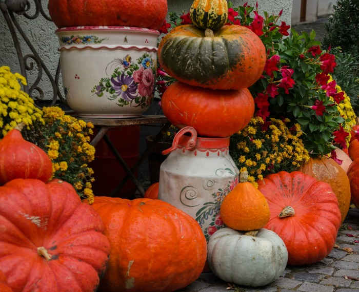 Pumpkins mums and garden planters make and easy fall decoration