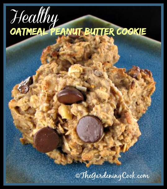 Healthy peanut butter chocolate chip cookie