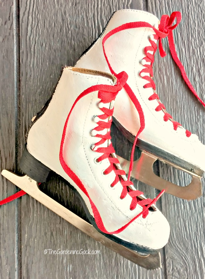 ice skates and red shoe laces