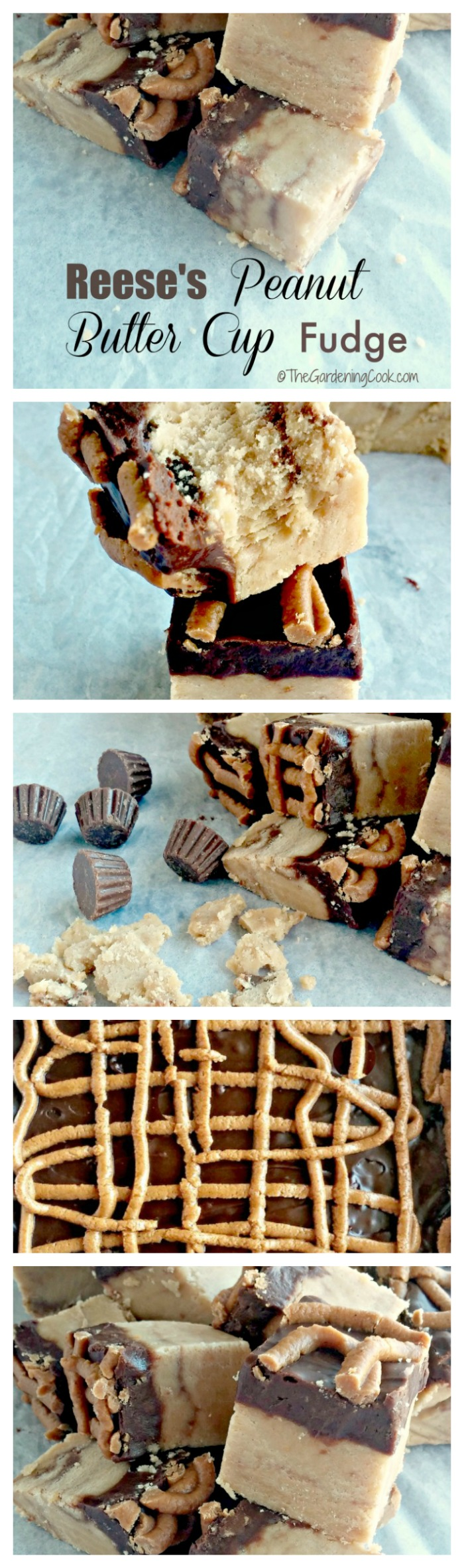 This Reese's peanut butter fudge recipe is OMG delicious and so easy to make. When I say it is fool proof, I really do mean it. thegardeningcook.com
