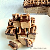 reeses-fudge-main