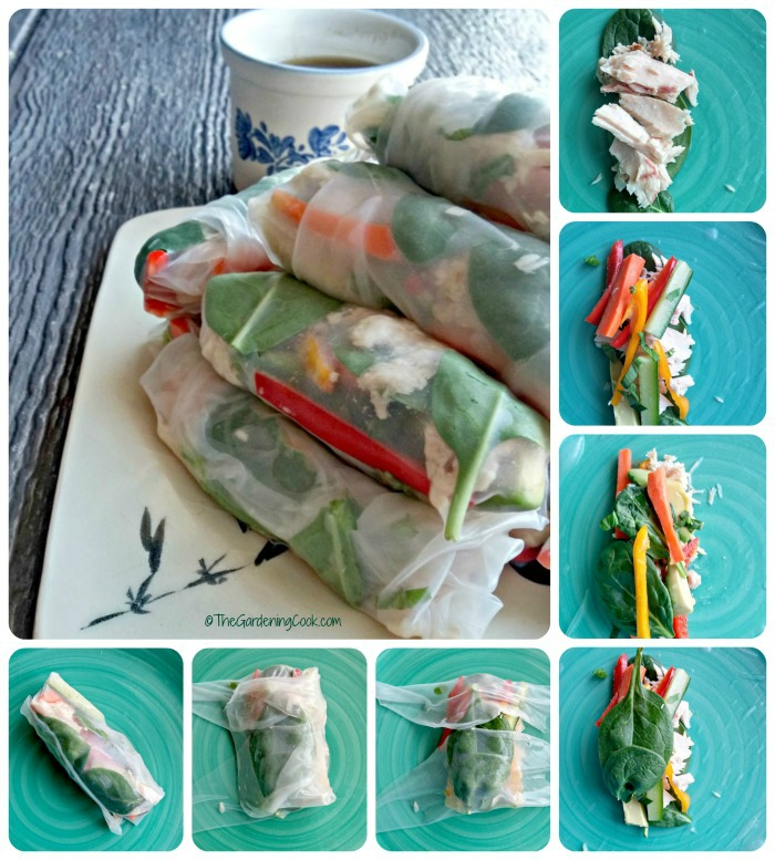 How to make Albacore tuna rice paper spring rolls