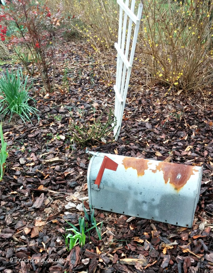 This mail box will hold my garden tools and look decorative when it is renovated.