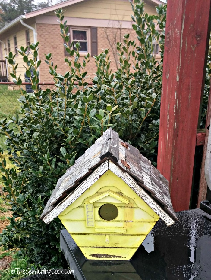 Inspect bird houses in the early spring.