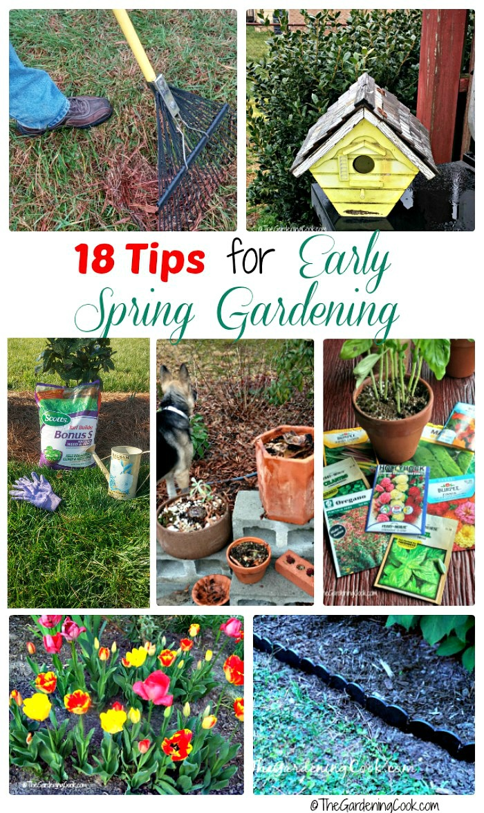 Getting a great garden in summer starts now. These early garden projects will make sure that your garden and lawn are the talk of the neighborhood all summer long. thegardeningcook.com #LoveYourLawn #ad