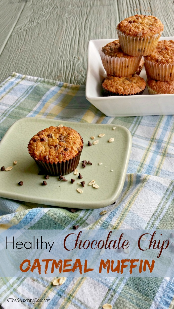 These healthy chocolate chip oatmeal muffins are lower in fat and calories and yet taste so delcious. thegardeningcook.com #BakeItWithMotts #ad