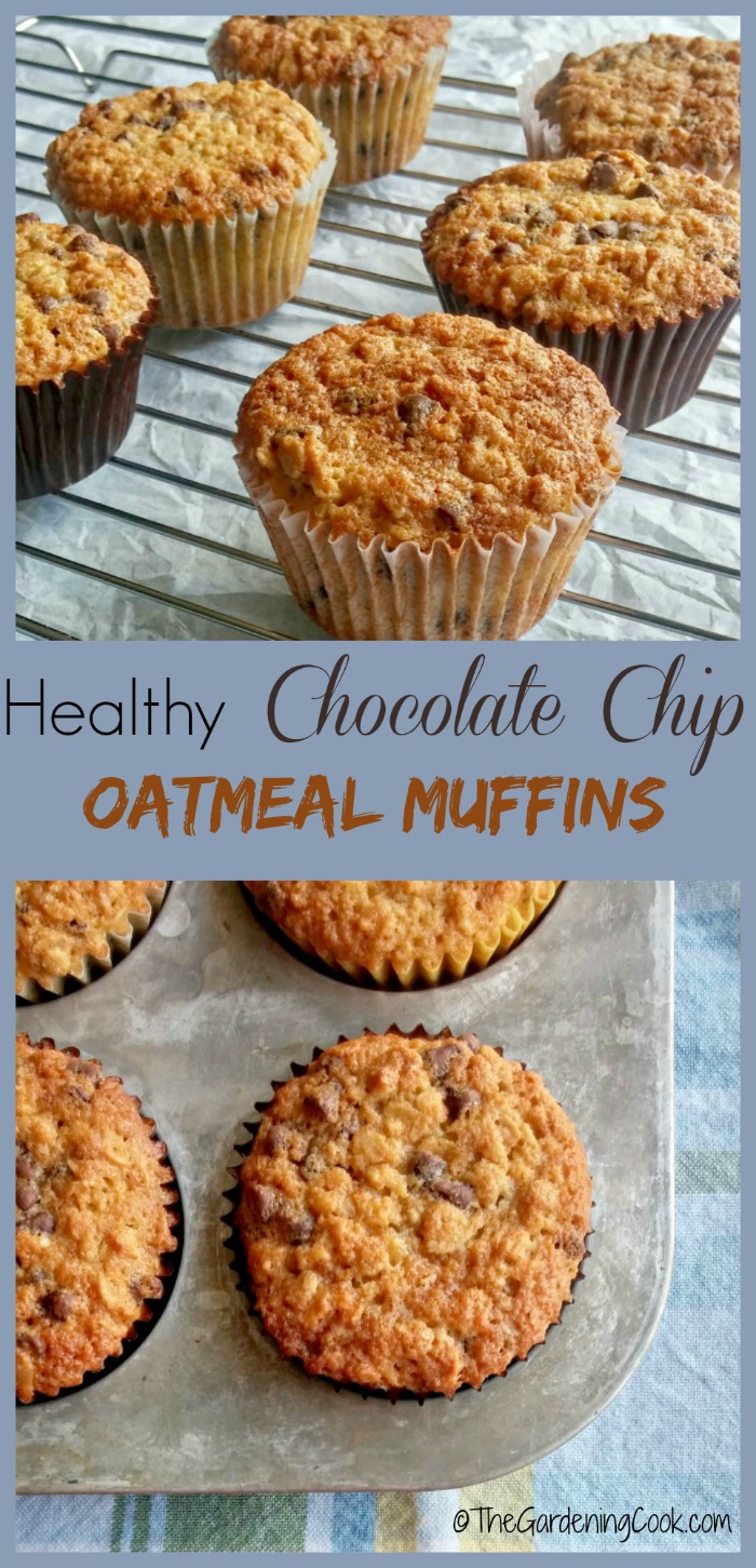 Healthy chocolate chip oatmeal muffins