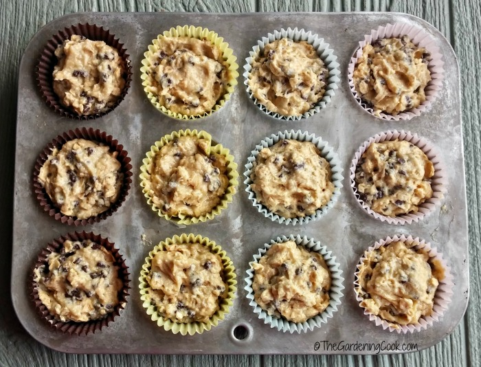 chocolate chip oatmeal muffins ready to bake