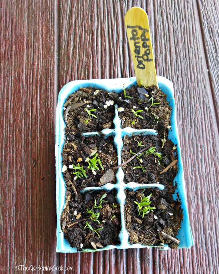 Use egg cartons and soil to start the seeds of small plants
