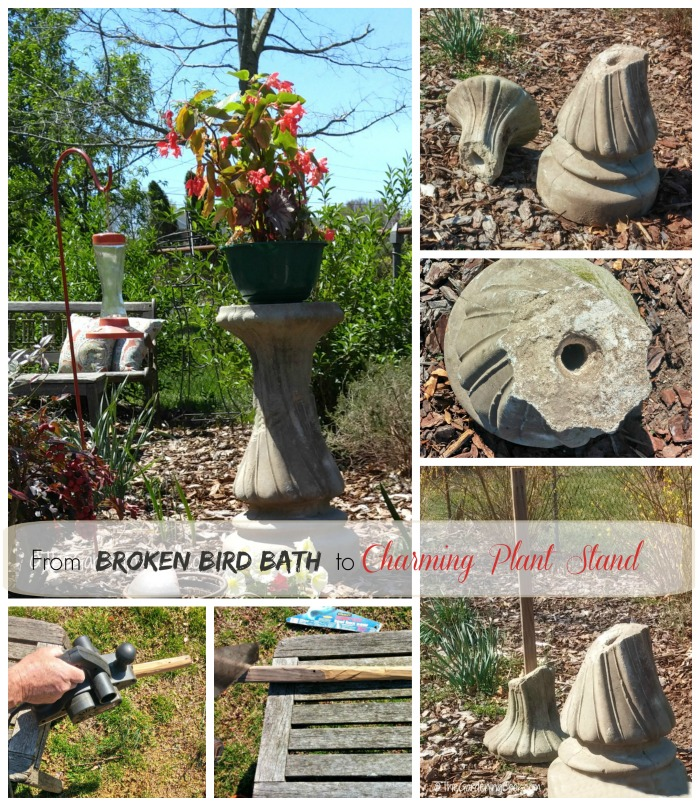 This recycled bird bath becomes a garden plant stand with a few neat DIY tricks. thegardeningcook.com