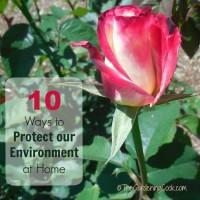 pretoect-our-environment-main