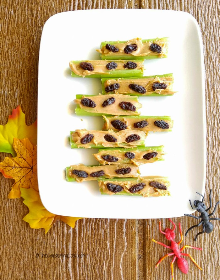 Ants on a log are a fun and healthy snack