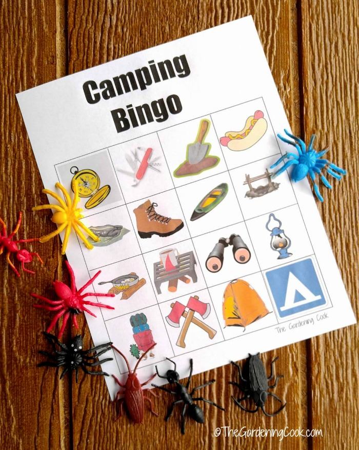 Camping bingo with bug markers