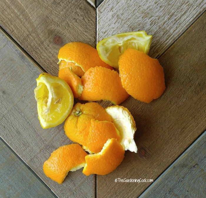 citrus rinds will keep cats away from your plants