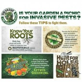 Do your share to help fight invasive pests