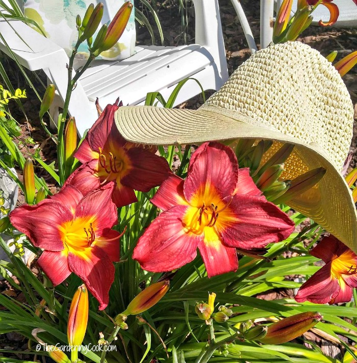 Wide Brimmed sun hat to shade your face for summer time gardening chores