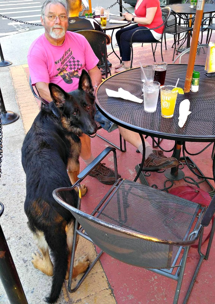 Restaurants with outside eating are the perfect place to dine with your four legged friend.