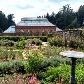 Biltmore-conservatory