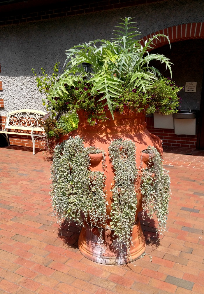 Huge Strawberry planter at Biltmore filled with succulents