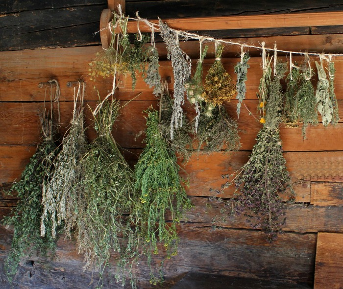 dry your own herb to preserve them at the end of the season