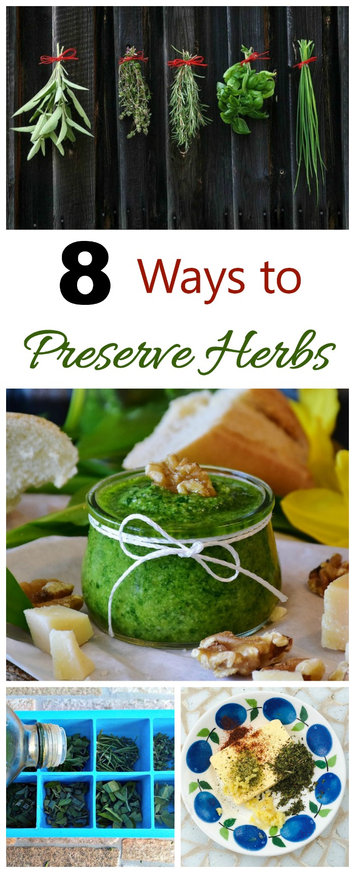These 8 ways for preserving herbs will keep the flavors going long after the growing season is over.
