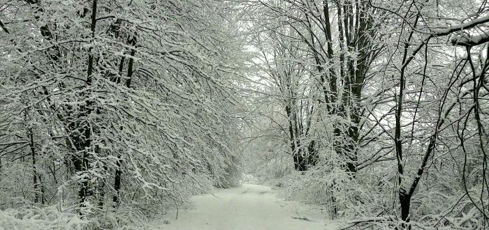 Winter wonderland scene in Southington Ohio
