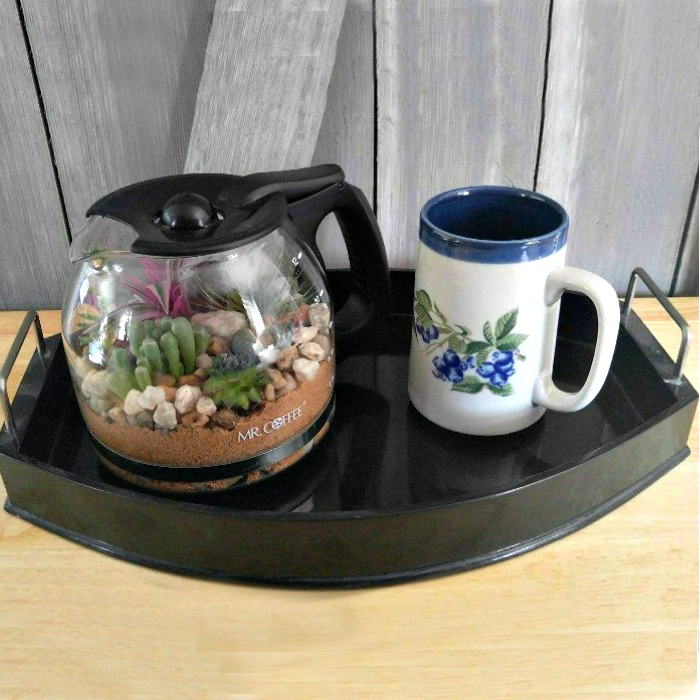 Coffee Pot Terrarium and a cup of coffee