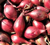 Red shallots have a milder flavor than onions and are smaller in size
