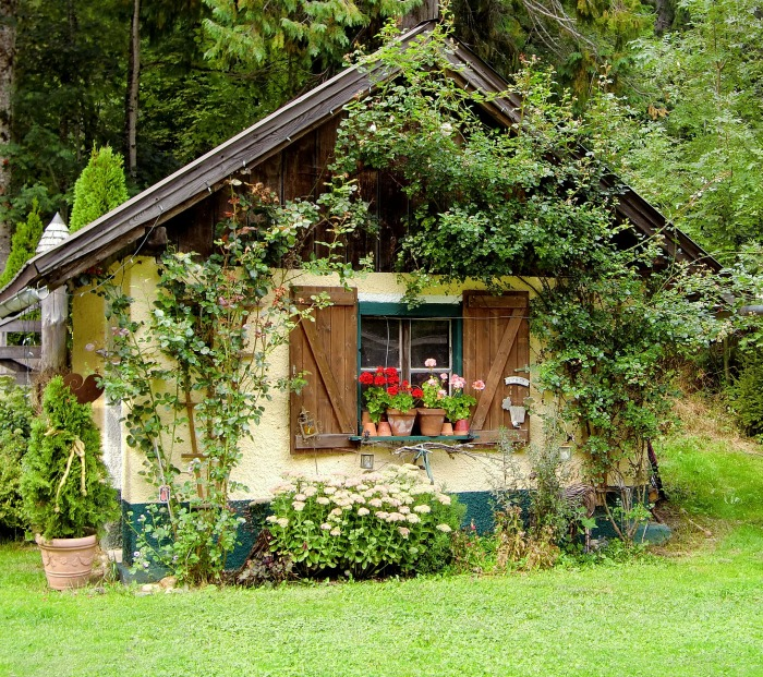 Alpine looking Garden Shed