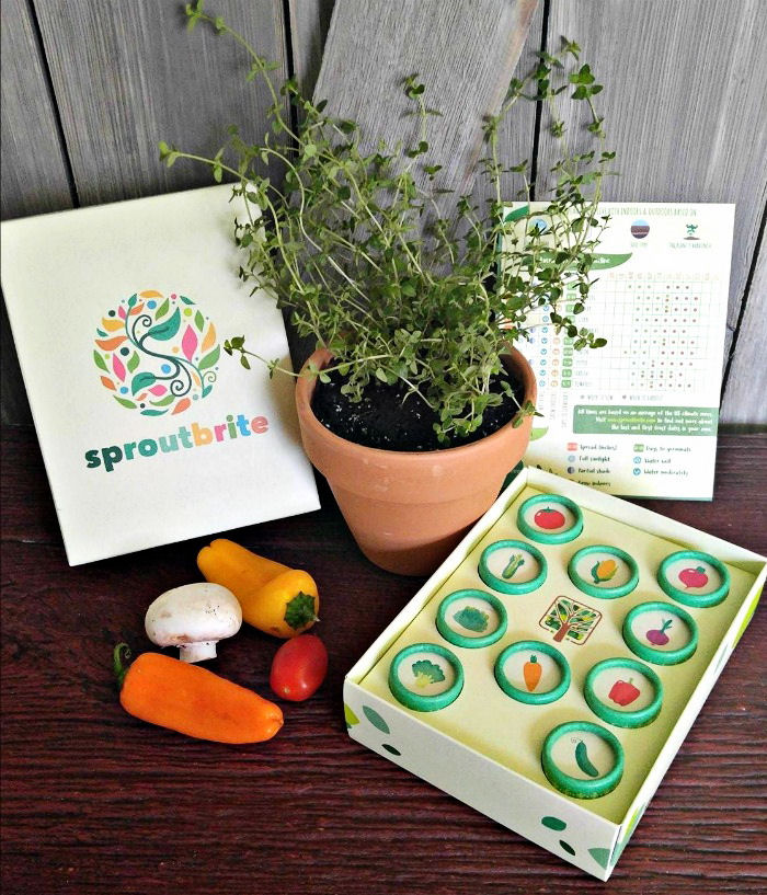 Heirloom seed kit from Sprout Brite