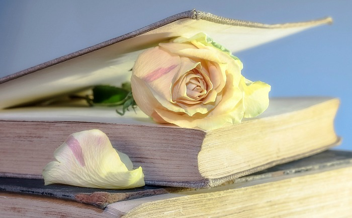 Pressing roses in a book